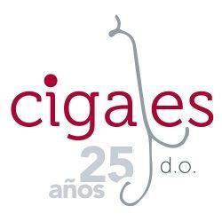 La Asociación Cultural Vacceos otorga el Premio Cigaleño del Año a la D.O. Cigales